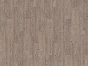 argyll fir greyfrairs