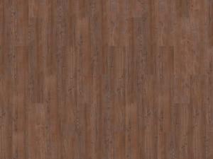 argyll fir serrano