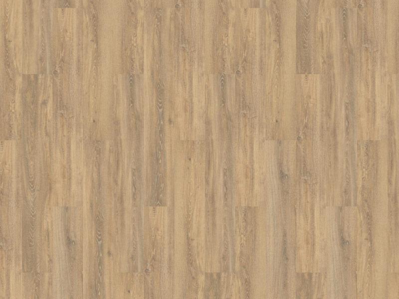 74-Authentic-Oak-XL-Piedmont-800