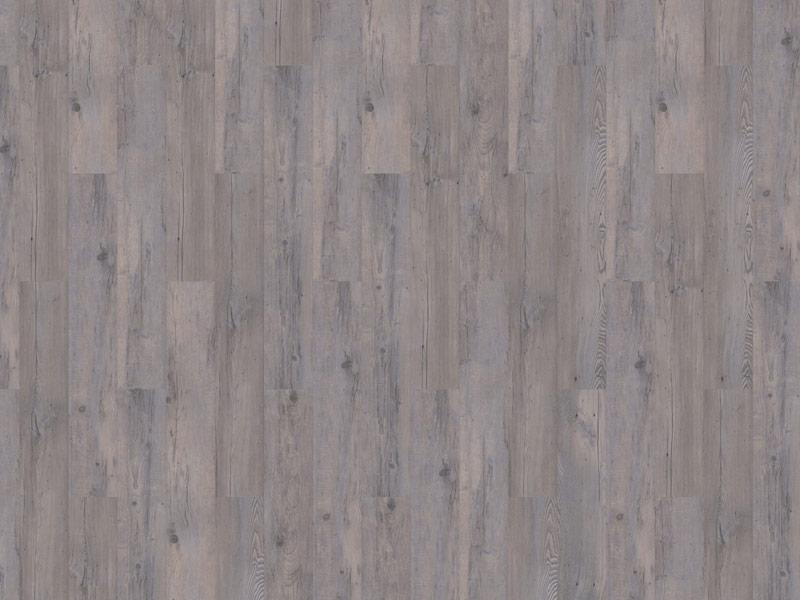81-Authentic-Plank-Sylvian-800